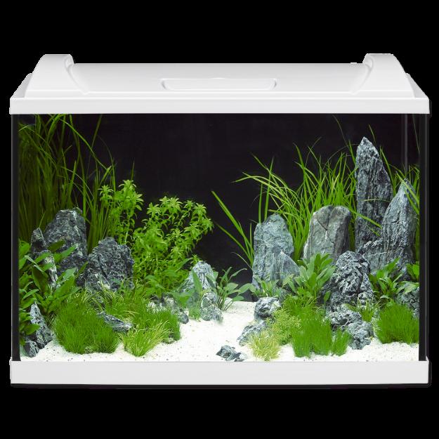 Akvárium set EHEIM Aquapro LED bílé 84l